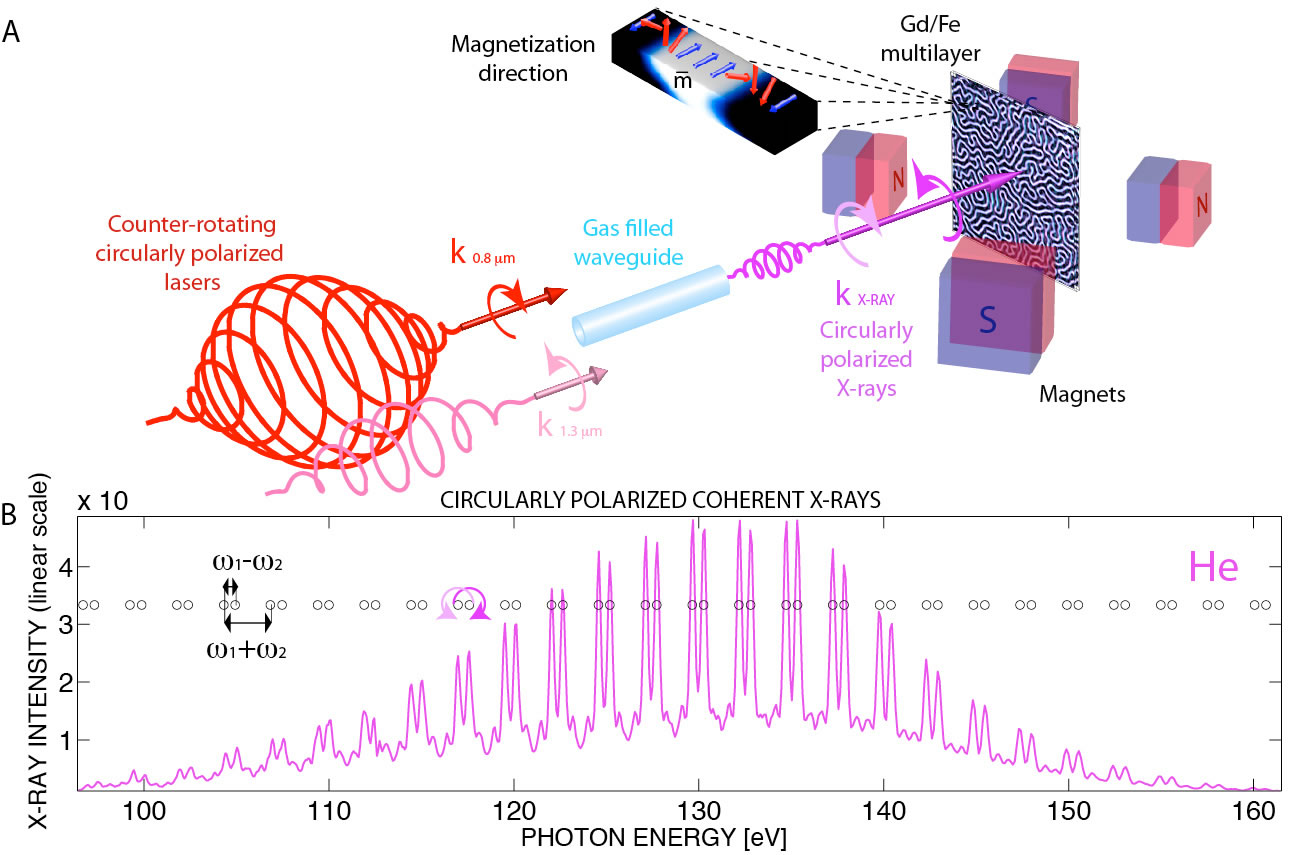 circularlypolarizedx-rays